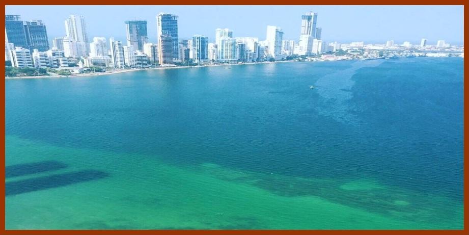 El papel no aguanta todo: necesitamos una Bahía de Cartagena actualizada