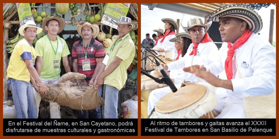 ¿Festival del Ñame en San Cayetano o Festival de Tambores en Palenque? ¡Pueden ser ambos!