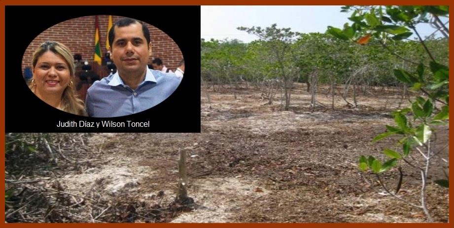 Concejales denuncian públicamente grave daño ambiental a la Ciénaga de la Virgen