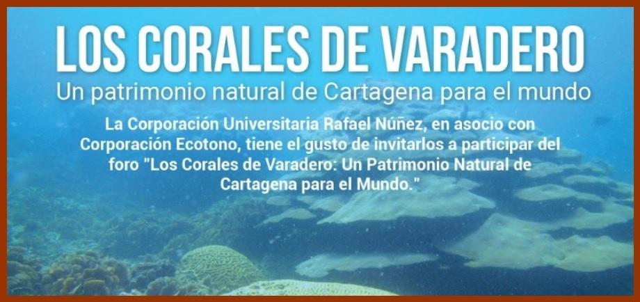 Hoy, foro 'Corales de Varadero: Un Patrimonio Natural de Cartagena para el mundo'