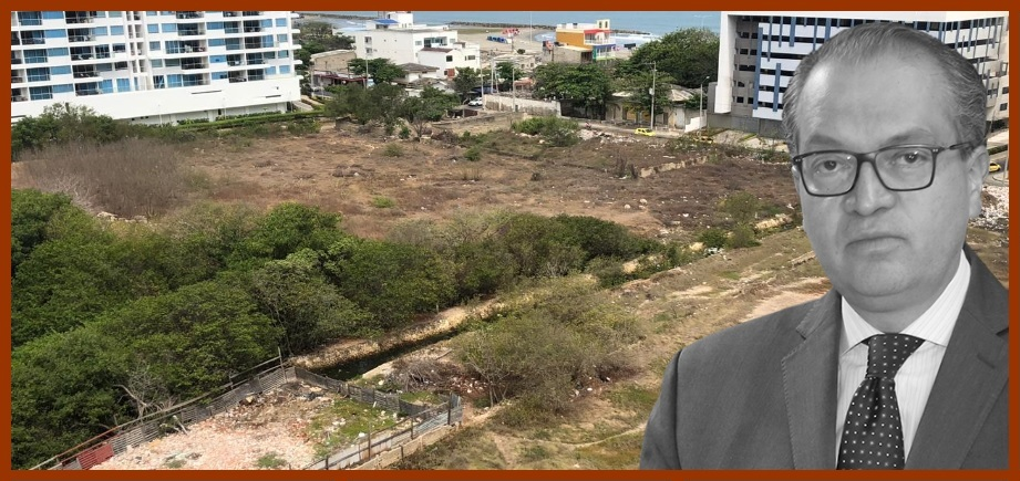 «El Distrito debe evitar la tala de mangles, los rellenos y las invasiones»: Procuraduría