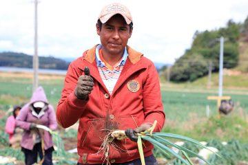 Garantizados los recursos para construir 200 viviendas rurales en Bolívar