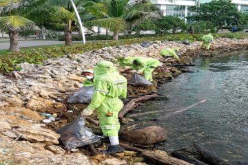 Pacaribe realiza jornadas de limpieza en cuerpos de agua