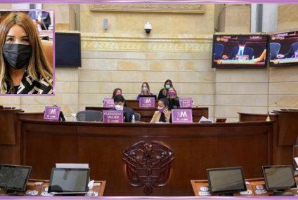 Ayer, 'Día M' en el Congreso: la prioridad fueron los proyectos en pro de las mujeres
