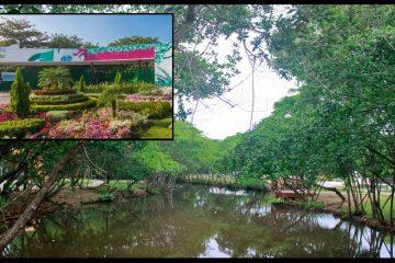 El Parque Espíritu del Manglar, ¿bajo la administración -otra vez – del Distrito?