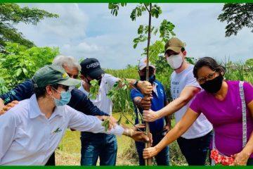 Promoviendo una masiva siembra de árboles, Cardique celebro ayer el Día Mundial del Ambiente