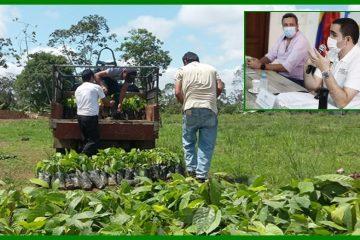 Bolívar, a romper las trampas de la pobreza a través de la agricultura